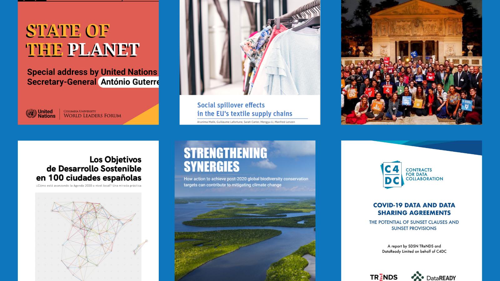 SDSN Newsletter – November 2020