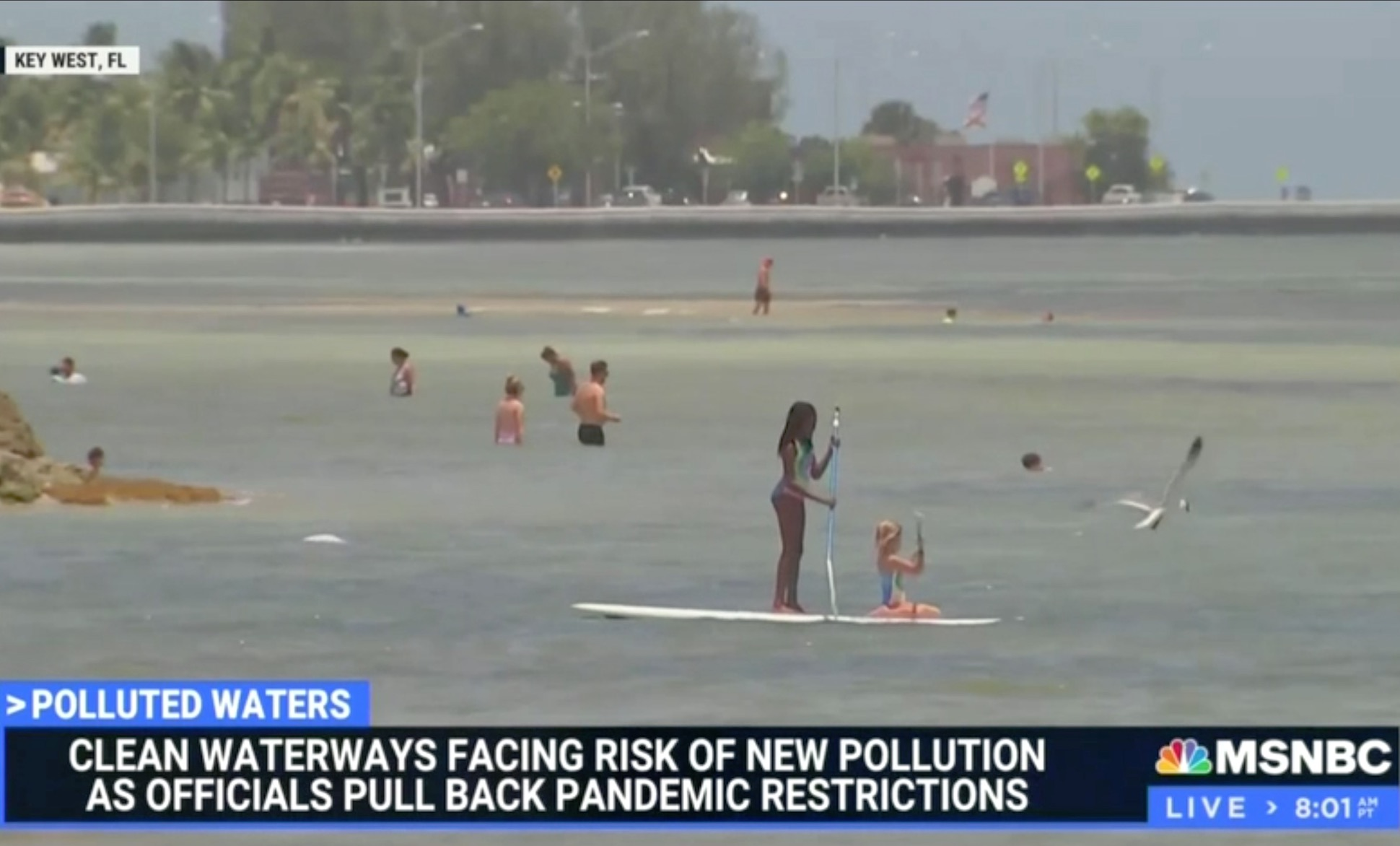 MSNBC Wails: Return of Cruise Industry = Latest 'Climate Crisis'